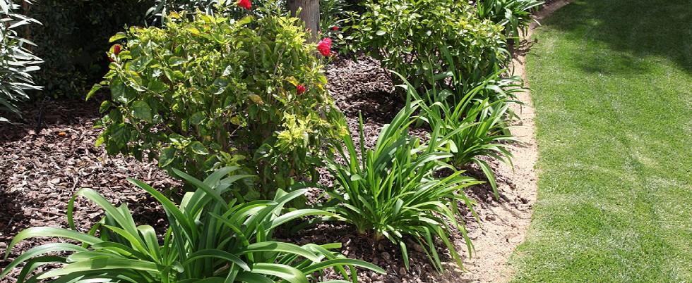 Συντήρηση κήπων Γλυφάδα, νότια προάστια, Ελληνικό, Βούλα