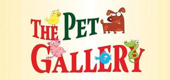 The pet gallery, pet shop, ζωοτροφές Πειραιάς