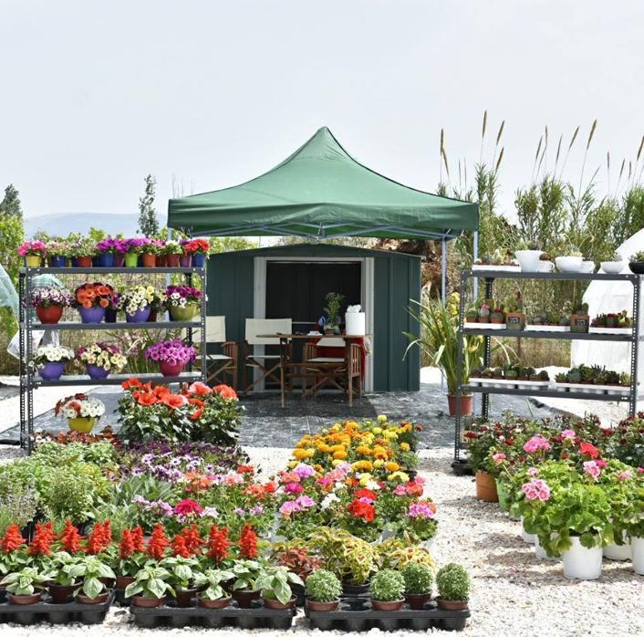 Άνθη Φυτά Παιανία, Φυτώρια Παιανία, Φυτώρια Γλυκά Νερά, Λουλούδια Παιανία, Λιπάσματα Παιανία, Φυτόχωμα Παιανία