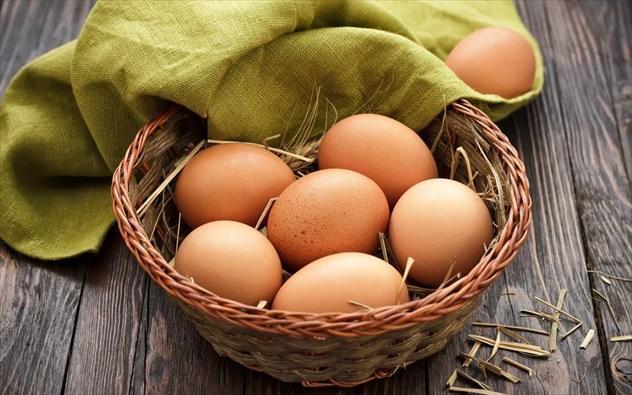 Αβγά Ελευθέρας Βοσκής Βόρεια Προάστια, παραγωγή βιολογικών αβγών Βόρεια Προάστια