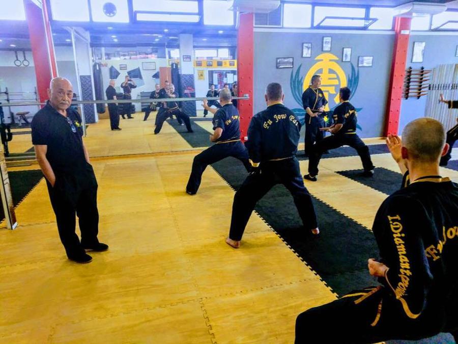Προπόνηση των δασκάλων της Αθλητικής Ένωσης Kung Fu / Fu Jow Pai Ελλάδος , υπο την εποπτεία του Grand Master Wai Hong Ng .