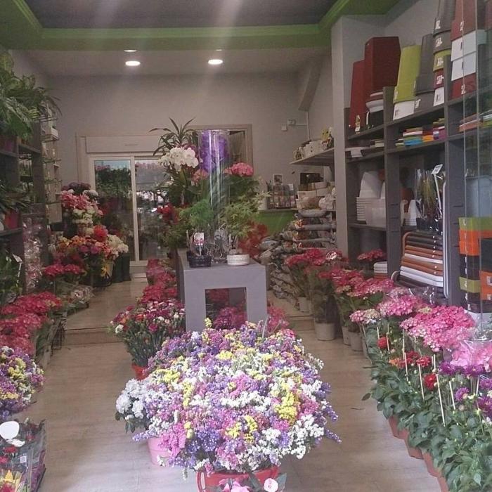Ανθοπωλείο Καισαριανή, Άνθη - φυτά Καισαριανή, Ανθοδέσμες Καισαριανή, Συνθέσεις λουλουδιών Καισαριανή, Γλάστρες Καισαριανή, Στολισμός εκδηλώσεων Καισαριανή