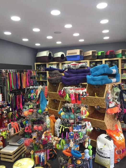 Pet Shop Νίκαια, Αξεσουάρ σκύλου Νίκαια, Αξεσουάρ Γάτας Νίκαια, Αντιπαρασιτικά Νίκαια