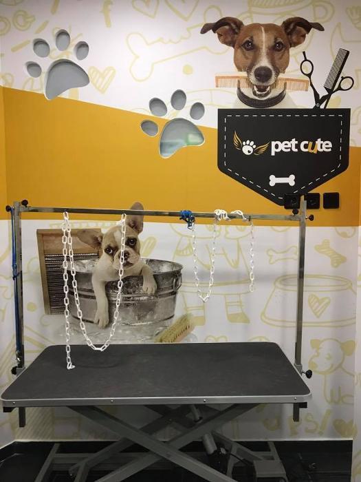Μπάνιο σκύλου Νίκαια, Κομμωτήριο σκύλου Νίκαια, Καλλωπισμός κατοικίδιων Νίκαια, Pet styling Νίκαια