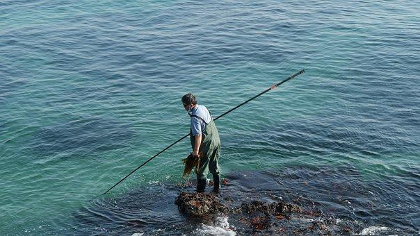 Είδη αλιείας Θεσσαλία, Μηχανισμοί ψαρέματος Θεσσαλία, Δολώματα Θεσσαλία