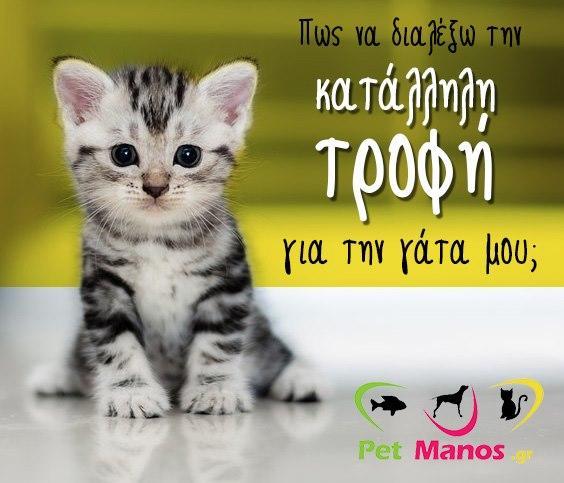 Τροφή γάτας Αρτέμιδα, Γατοτροφή Αρτέμιδα, Delivery pet shop Αρτέμιδα